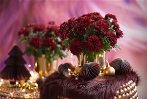 Chrysanne Grandezza Red - Christmas