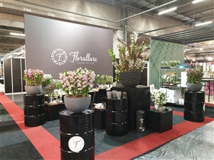 Trade Fair Aalsmeer 2019