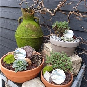 Garden Treasures