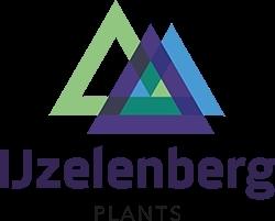 IJzelenberg logo 250x201px