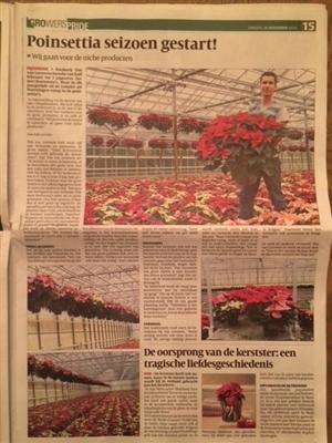 interview bloemenkrant