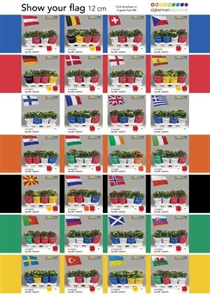 Slijkerman moments landenvlaggen 12cm