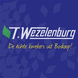 logo 2 wezelenburg 2014 10 vierkant