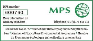 600760 1 MPS[1]