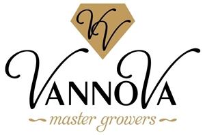 logo VannoVa