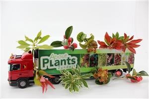 Sfeer vrachtwagen About Plants Zundert