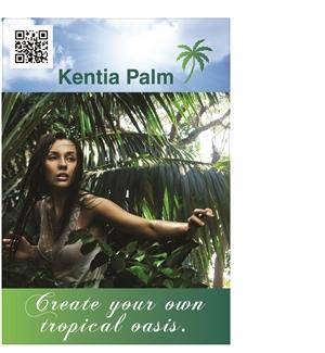 Hartog palmen poster 70x100cm lc