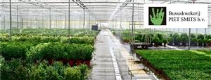 de kwekerij voor header groothandel site