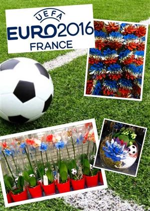 Euro 2016 Frankrijk