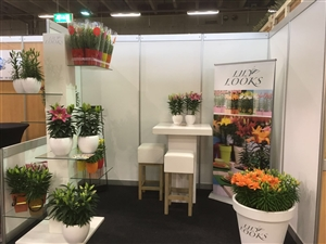 FloraHolland Autumn Fair 2016