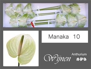 Manaka 10 stuks