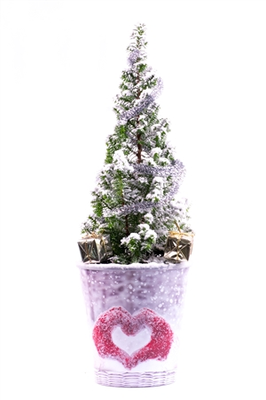 Kerstboom website 0413