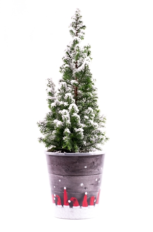 Kerstboom website 0443