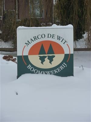 Marco de Wit