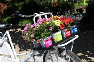 Fiets Blooming Joy P12 (4)