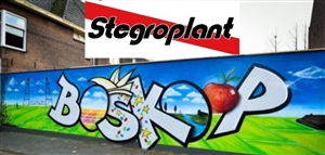 Boskoop Graffiti   foto 2