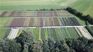 luchtfoto kwekerij