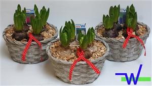 Whitewash mand met decoratie lint 3 kleuren