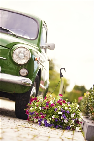 Fiat 600 met blooming joy