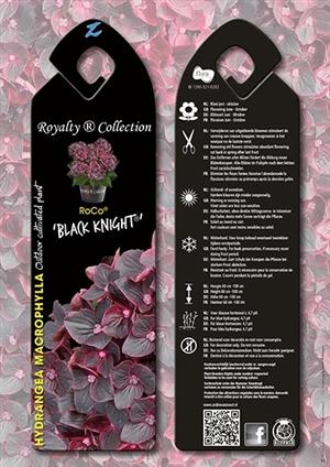 RoCo Black Knight