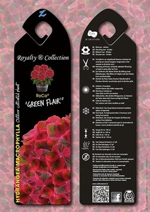 RoCo Green Flair