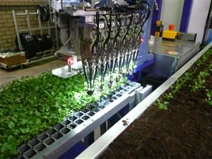 ISO plant machine ( Kwekerij Baas)