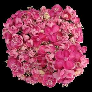 PinkDoodles sortsvisning 630x630 w300 h300 i