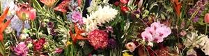 IPM Essen bloemen wand