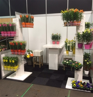 FloraHolland Winter Fair 2015