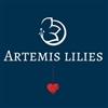 Artemis-Lilies