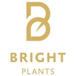 Bright-Plants