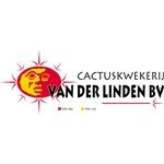 Cactuskwekerij-van-der-Linden