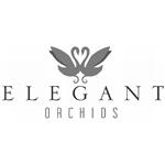 Klinge-Elegant-Orchids