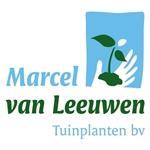 M-v-Leeuwen-Tuinplanten-bv