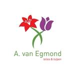 A-van-Egmond-VOF