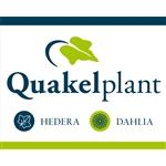 Quakelplant-BV