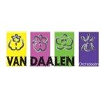 Van-Daalen-Orchideeën