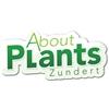 About-Plants-Zundert-BV