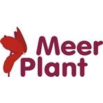 Meerplant
