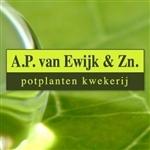 AP-van-Ewijk