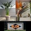 Kwekerij-Blok