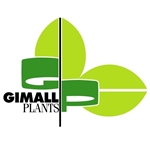 Gimall-Plants-NL-BV