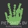 Buxuskwekerij-Piet-Smits-BV