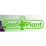 Kwekerij-Geefplant