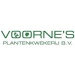 Voornes-Plantenkwekerij-BV