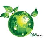 RM-Plants