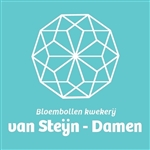 Bloembollenkwekerij van Steijn-Damen