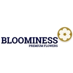 Bloominess-BV