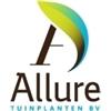 Allure-Tuinplanten