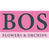 Bos-Flowers-en-Orchids-–-Freesia